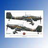 ED72004 - 1:72 Luftwaffe Ground Attackers vol.1 - Ju 87 D-3, Hs 129, Fw 190F-8 EXITO DECALS